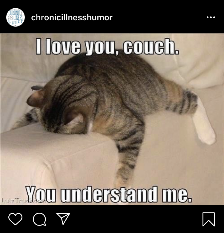 """a fat cat lying face down on the arm of a couch """"I love you, couch. You understand me"""""""